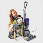 What to Look For When Browsing for Pet Hair Vacuums