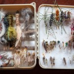 How to Organize Your Tackle Box
