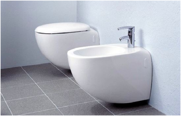 Different Types of Toilet Seats and Toilet Designs